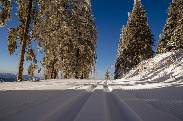 cross-country-ski-trail-1839039_640